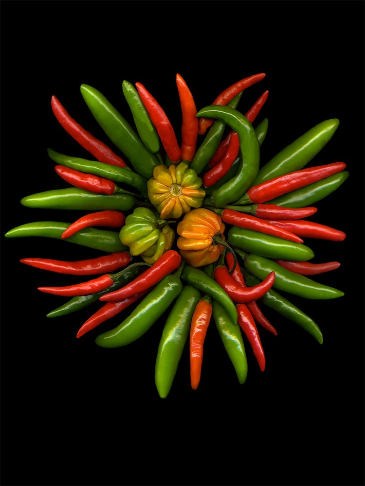 HOT PEPPERS #1